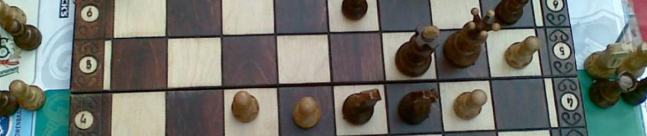 Schachfreunde fahren zur Landesmeisterschaft!
